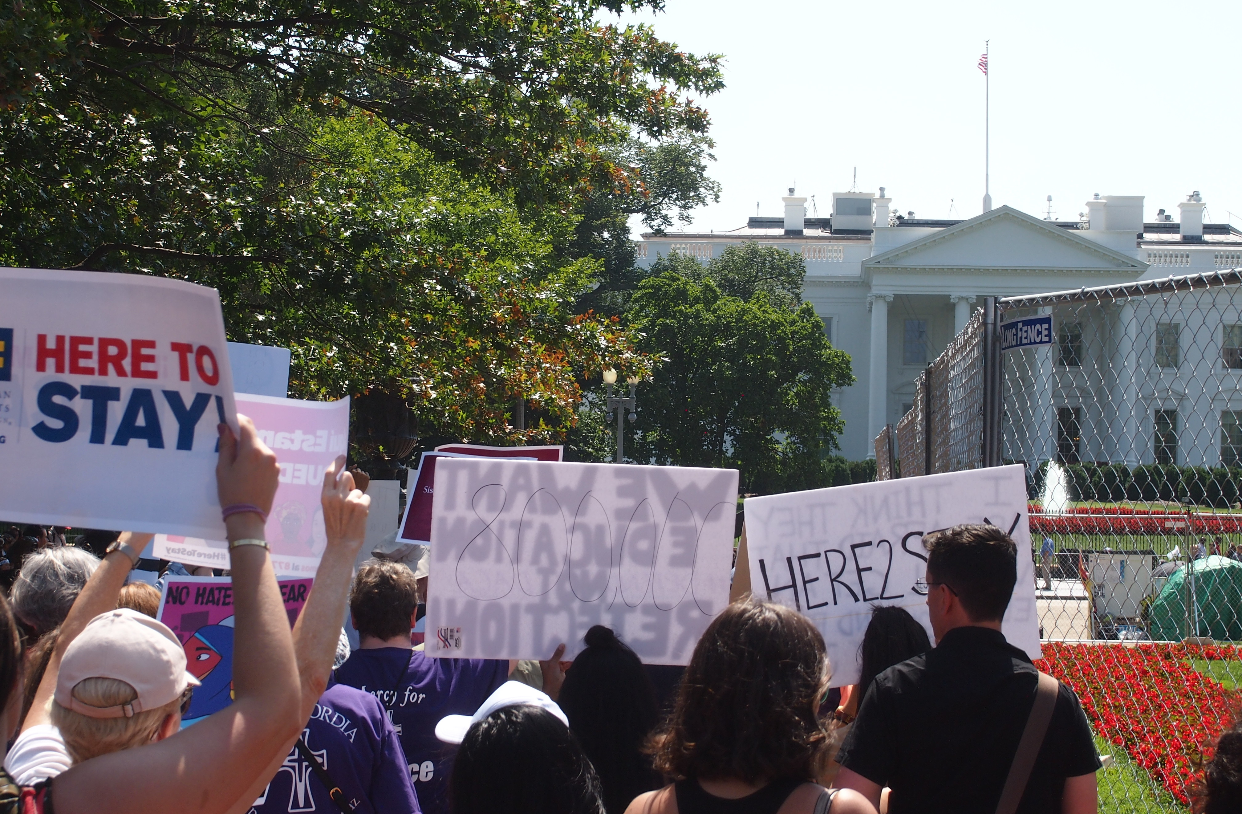 Photo shows protesters outside the White House, Tuesday, Sept. 5, 2017