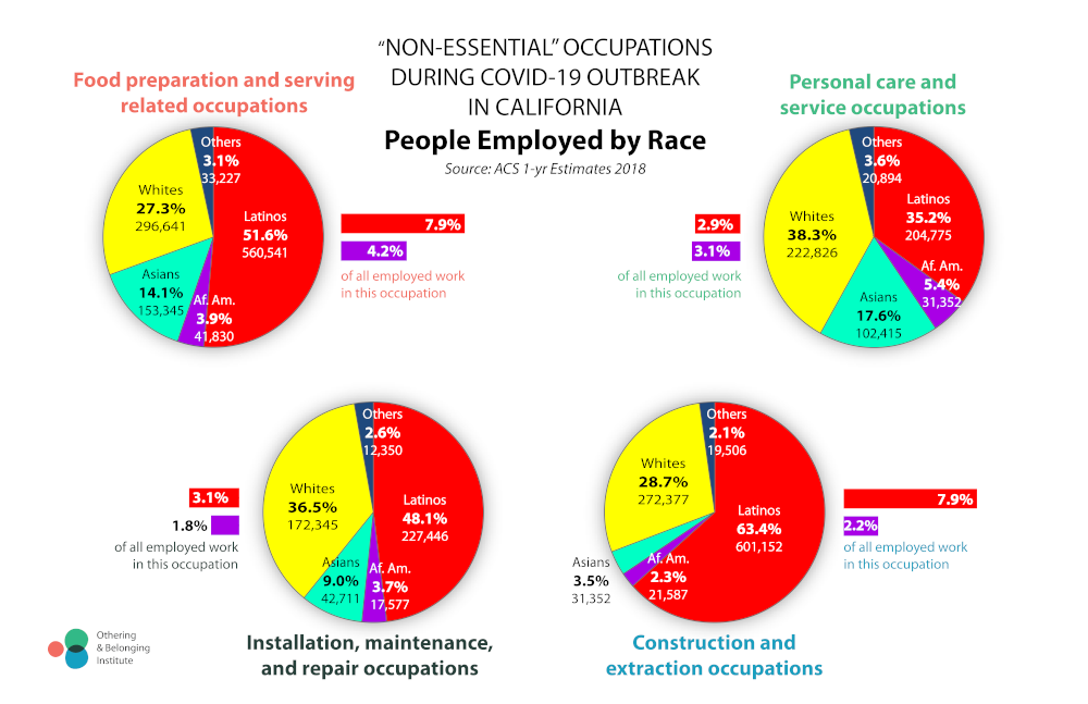 Infographic showing occupation by race