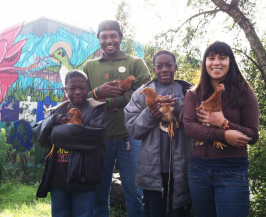 This picture is of four Richmond youth holding young chickens