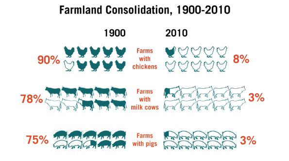 This infographic includes the farmland consolidation from 1900-2010