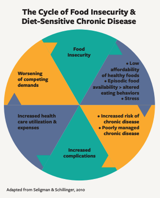 This infographic includes a chart of The Cycle of Food Insecurity & Diet-Sensitive Chronic Disease